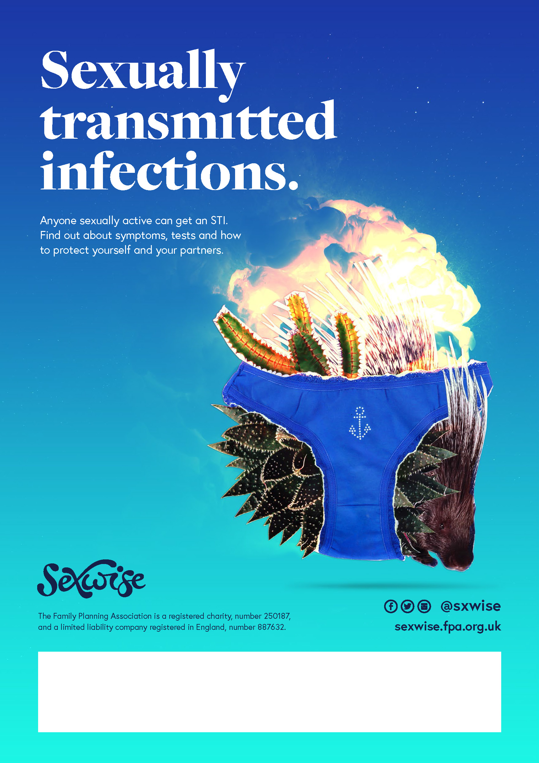Sexwise sexually transmitted infections poster with space to add your details