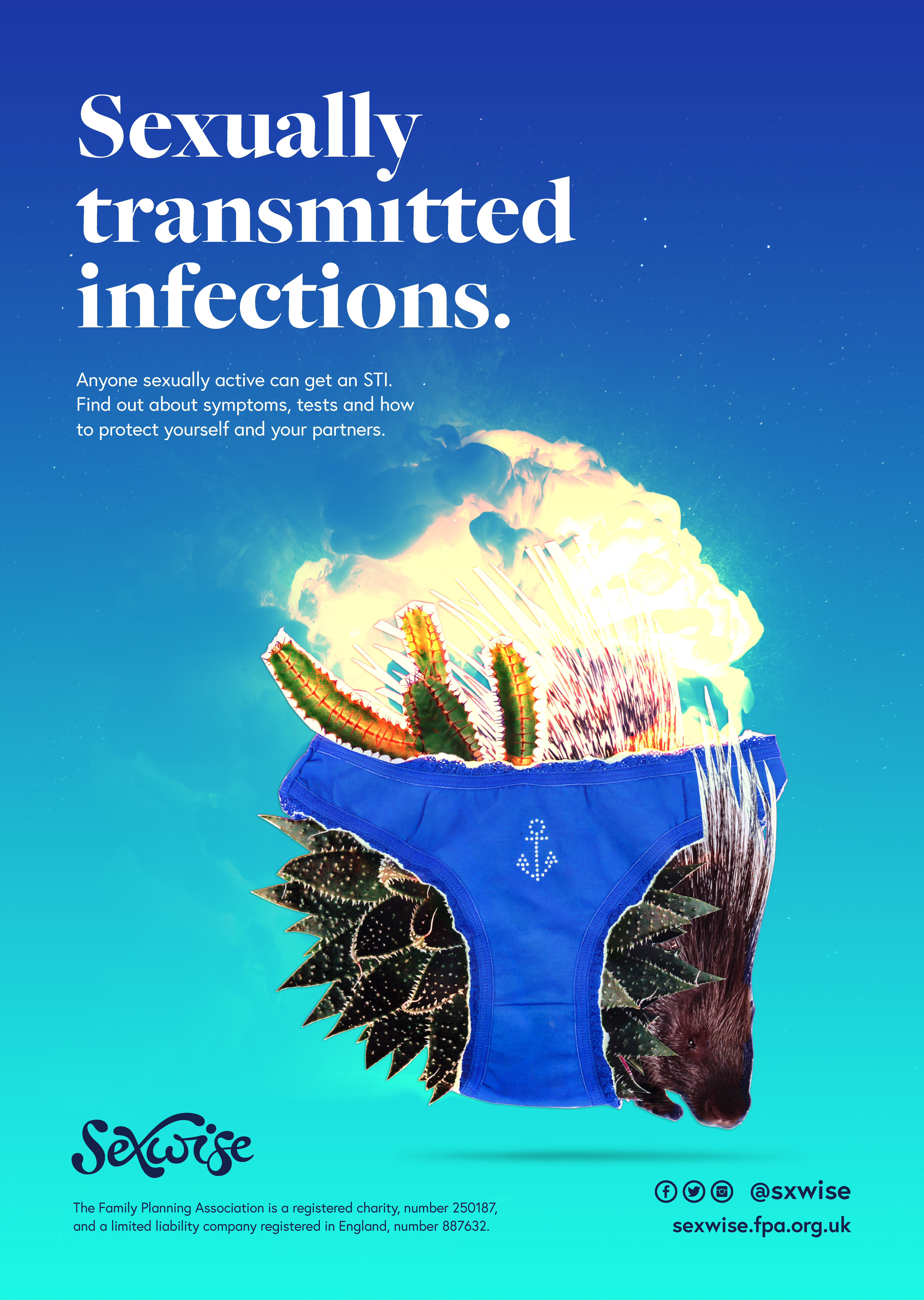 Sexwise sexually transmitted infections poster
